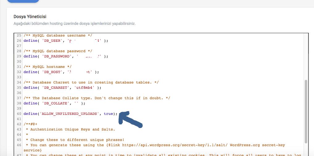 wordpress dosya yükleme hatası