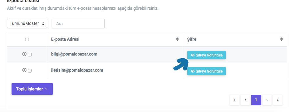 e ticaret sitesi kurma, şirket uzantılı mail açma